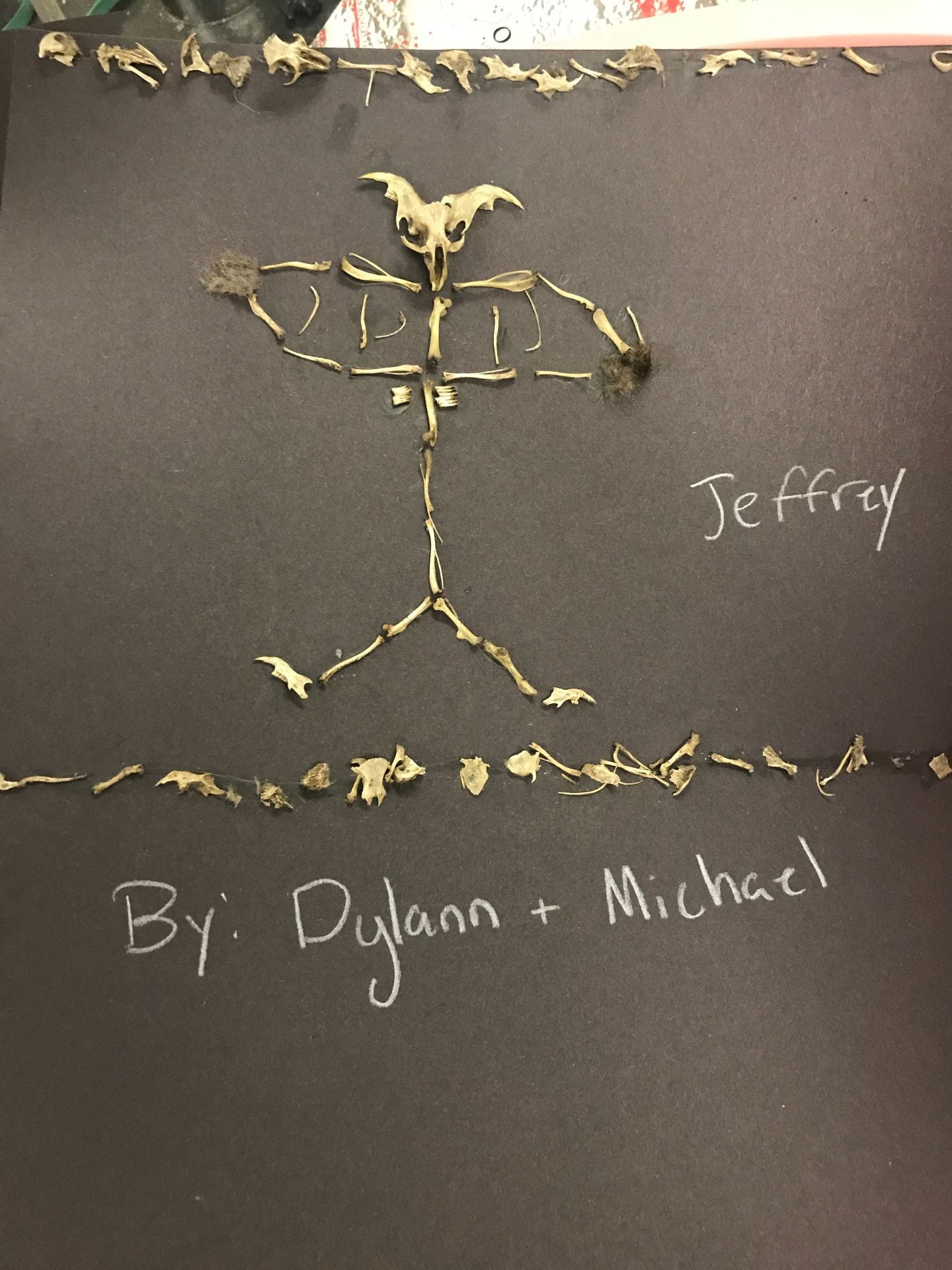 skeleton 1-1k83sjv | Pathfinder School Science
